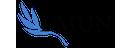 DMUN Logo